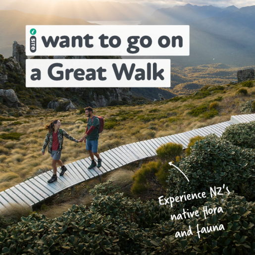 I want to go on a Great Walk